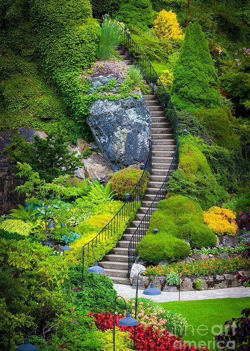 America Greeting Card featuring the photograph Butchart Gardens Stairs by Inge Johnsson