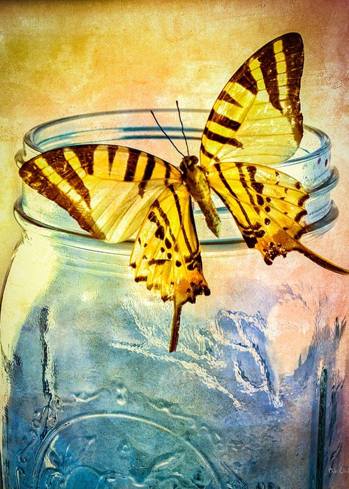 Blue Glass Greeting Card featuring the photograph Butterfly Blue Glass Jar by Bob Orsillo