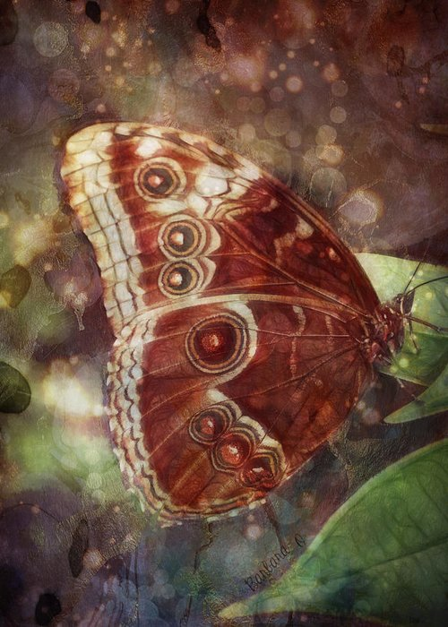 Butterfly Greeting Card featuring the photograph Butterfly In My Garden by Barbara Orenya