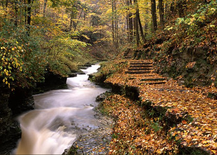 Buttermilk Falls State Park Greeting Cards