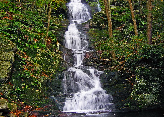 Background Greeting Card featuring the photograph Buttermilk Falls by Sheila Savage