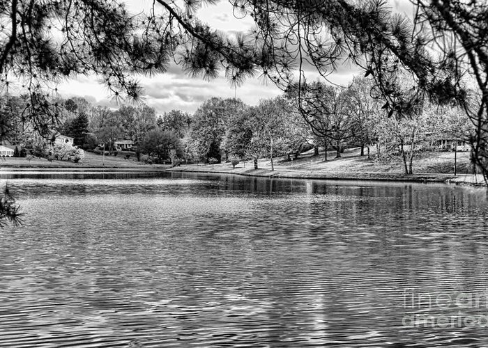 Tennessee Greeting Card featuring the photograph Bw Lake Views by Chuck Kuhn