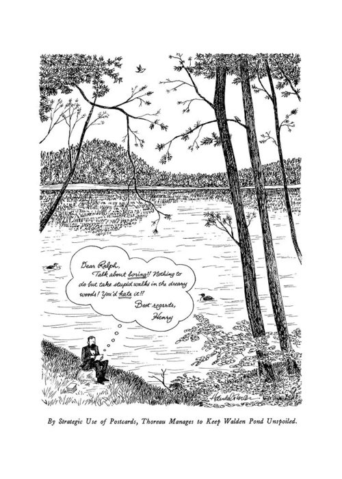 Walden Pond Drawings Greeting Cards