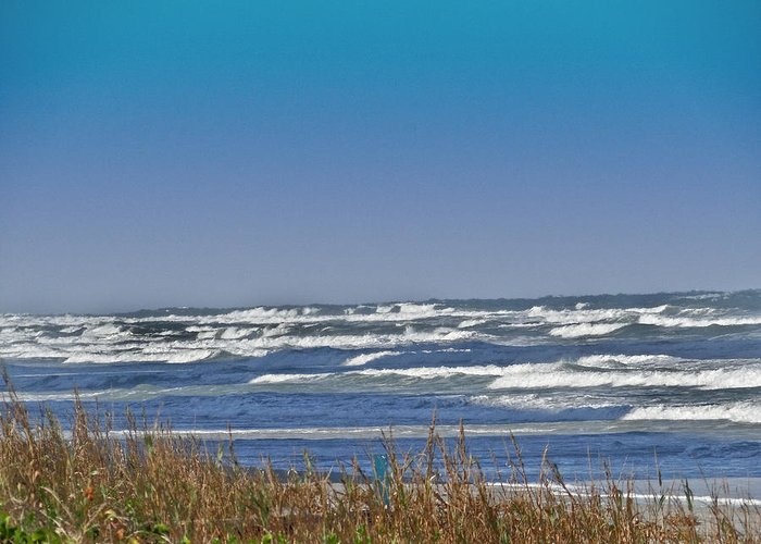 Ocean Greeting Card featuring the photograph By The Sea by Dennis Dugan