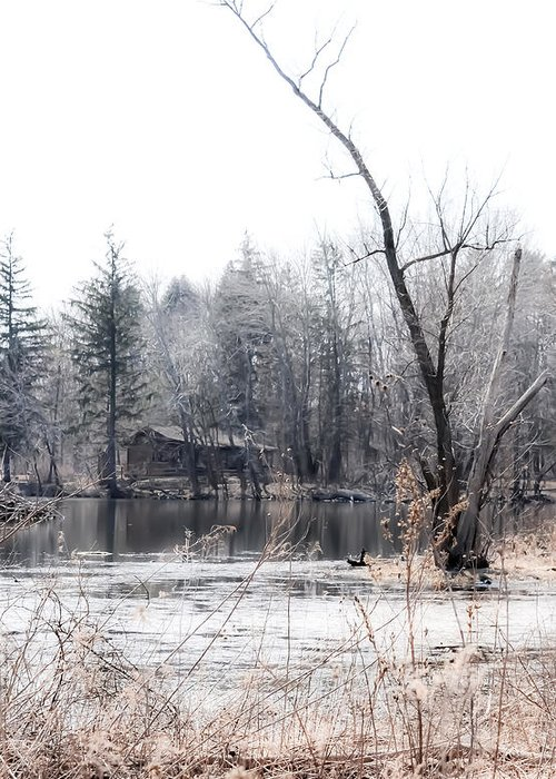 Water Greeting Card featuring the photograph Cabin In The Woods by Julie Palencia