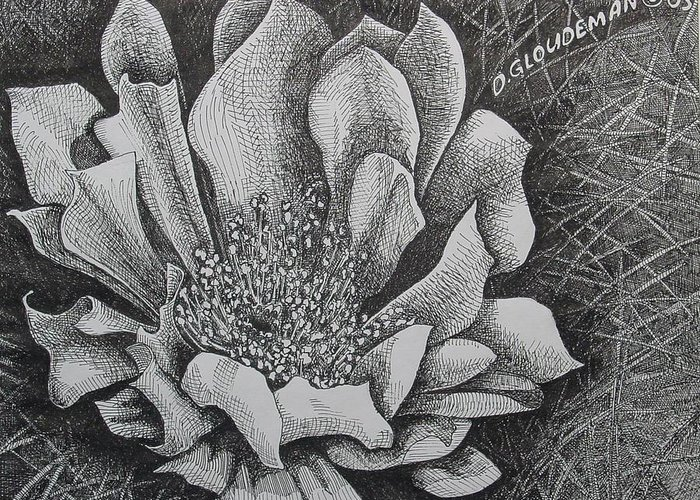 Flowers Greeting Card featuring the drawing Cactus Flower by Denis Gloudeman