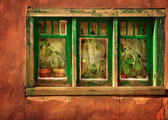 Santa Fe Greeting Card featuring the photograph Cactus Window by Keith Berr