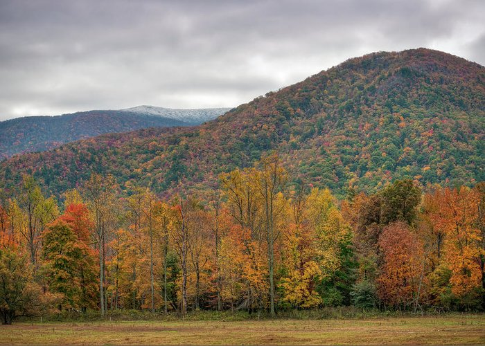 Scenics Greeting Card featuring the photograph Cades Cove, Great Smoky Mountains by Fotomonkee