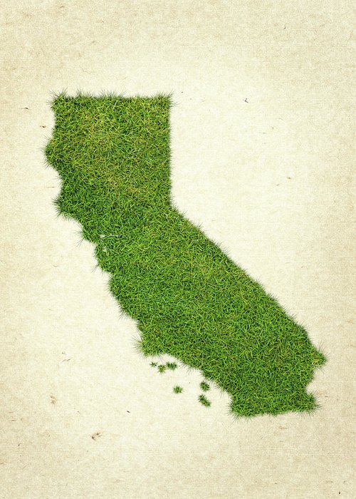 Map Of California Greeting Card featuring the photograph California Grass Map by Aged Pixel