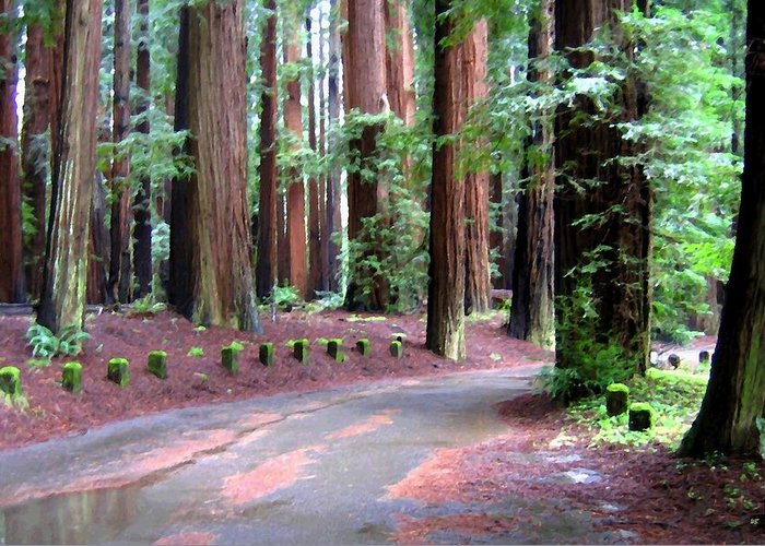 California Redwoods 3 Greeting Card featuring the digital art California Redwoods 3 by Will Borden