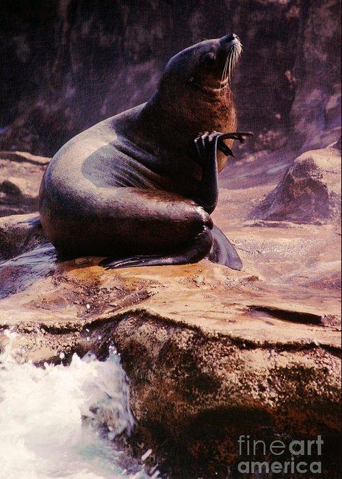 Sea Lion Greeting Card featuring the photograph California Sea Lion Raising A Flipper by Anna Lisa Yoder