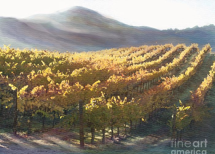 Corde Valle San Martin Ca Greeting Card featuring the painting California Vineyard Series Vineyard In The Mist by Artist and Photographer Laura Wrede