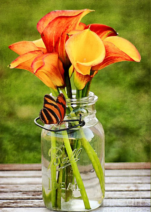 Mason Jar Greeting Card featuring the photograph Calla's And The Butterfly by Darren Fisher