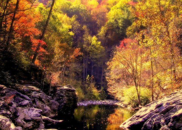 Mountain Streams Greeting Card featuring the photograph Calling Me Home by Karen Wiles