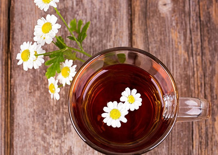 Aromatherapy Greeting Card featuring the photograph Camomile Tea by Jane Rix