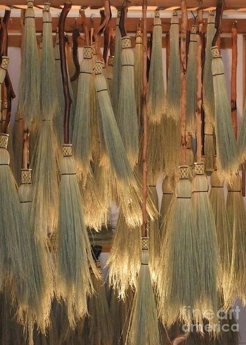 Canada Greeting Card featuring the photograph Canada Vancouver Brooms by Coventry Wildeheart