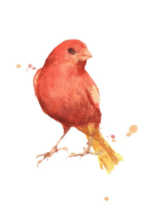 Canary Greeting Cards