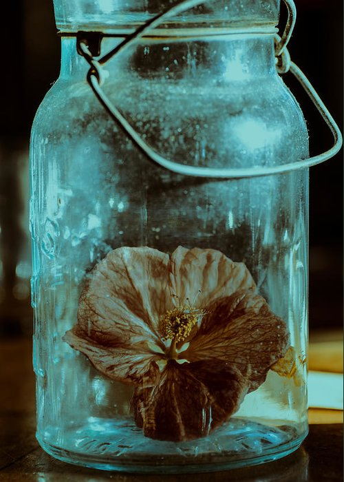 Canning Jars Greeting Card featuring the photograph Canned Spring by Susan Capuano