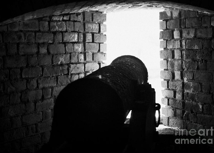 Fort Greeting Card featuring the photograph Cannon Pointing Out Of Wall Port In Fort Jefferson Dry Tortugas National Park Florida Keys Usa by Joe Fox