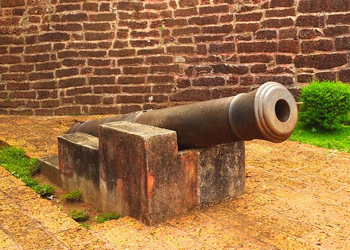 Cannon Greeting Card featuring the photograph Cannon by Rakesh KR
