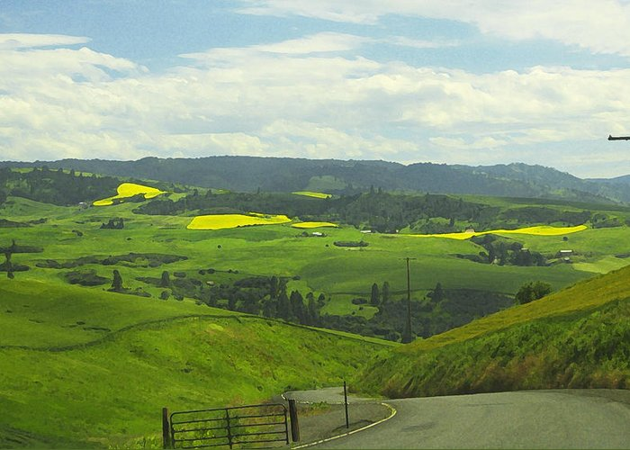 Canola Greeting Card featuring the photograph Canola Country Road by Anne Mott