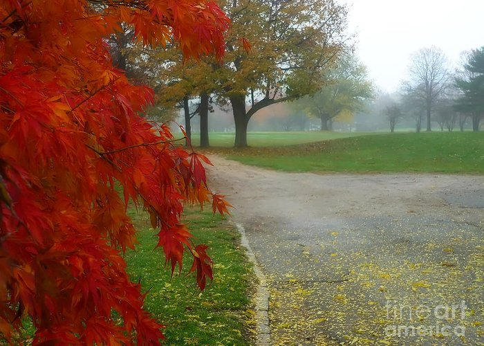Autumn Greeting Card featuring the photograph Cantiague Park by Jeff Breiman