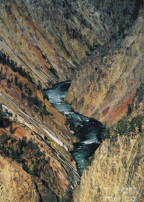 Yellowstone Greeting Card featuring the photograph Canyon Jewel-small by Kathy McClure