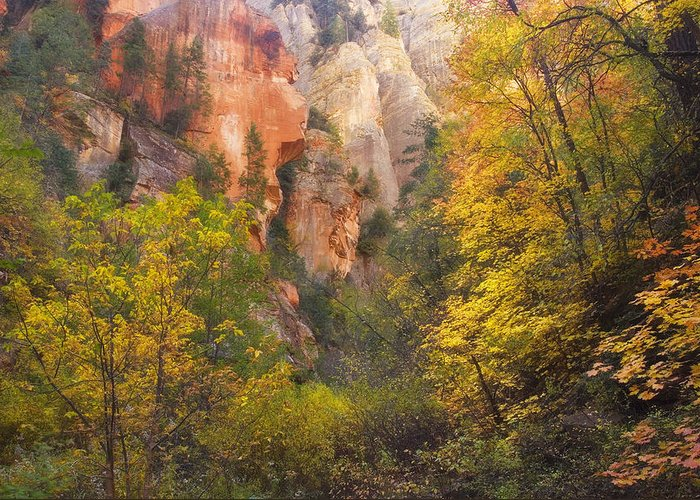 West Fork Oak Creek Canyon Greeting Card featuring the photograph Canyon Kaleidoscope by Peter Coskun