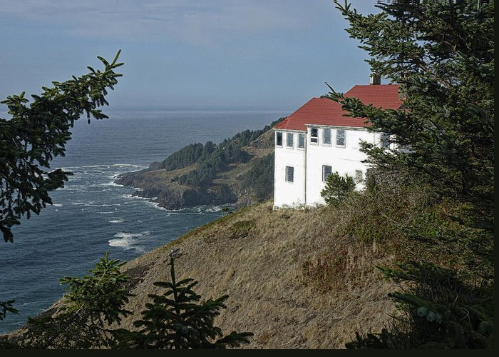 Coast Greeting Card featuring the photograph Cape Foulweather Lookout by Betty Depee