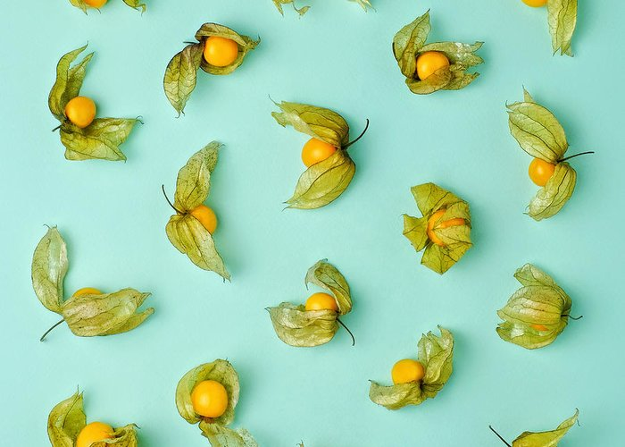 Winter Cherry Greeting Card featuring the photograph Cape Gooseberries Physalis, Winter by Juj Winn