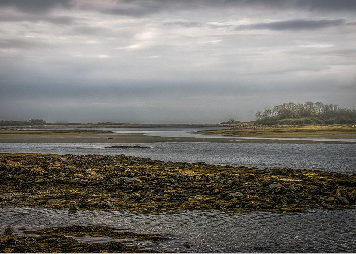 Kennebunk Greeting Card featuring the photograph Cape Porpoise Maine - Fog On The Horizon by Bob Orsillo