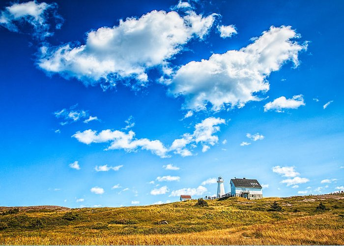 Lighthouse Greeting Card featuring the photograph Cape Spear National Historic Park by Perla Copernik