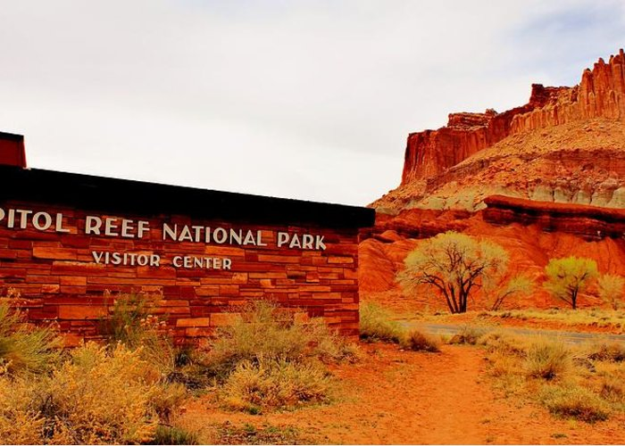 Capitol Reef Greeting Card featuring the photograph Capitol Reef N P by Benjamin Yeager