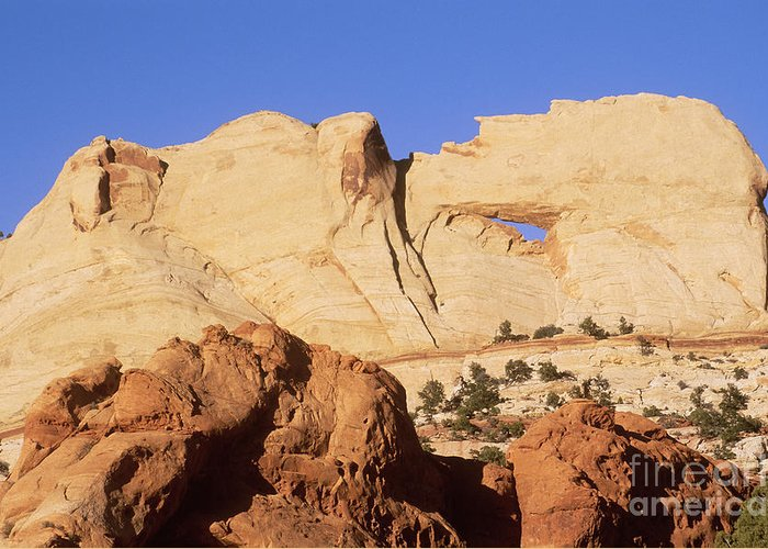 Waterpocket Fold Greeting Card featuring the photograph Capitol Reef National Park, Utah by Mark Newman