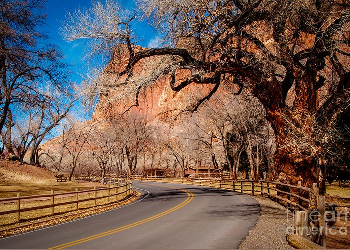 Bob And Nancy Kendrick Greeting Card featuring the photograph Capitol Reef Scenic Drive by Bob and Nancy Kendrick