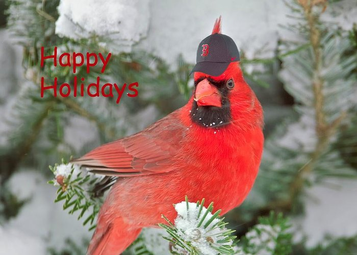 Boston Greeting Card featuring the photograph Capped The Cardinals by Dale J Martin
