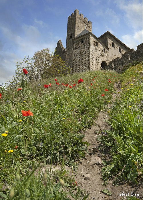 Carcassone Greeting Card featuring the photograph Carcassonne Poppies by Robert Lacy