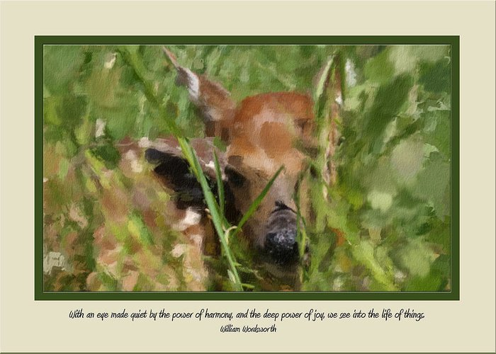 Deer Greeting Card featuring the photograph Card 0213 by Helen Ellis