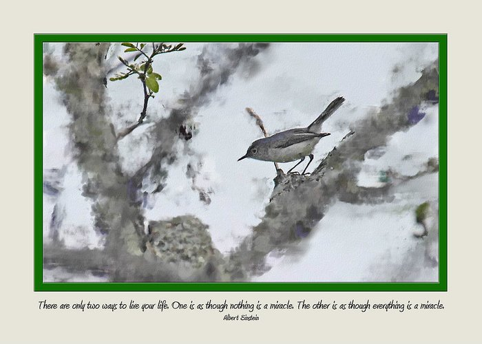 Birds Greeting Card featuring the photograph Card 0221 by Helen Ellis