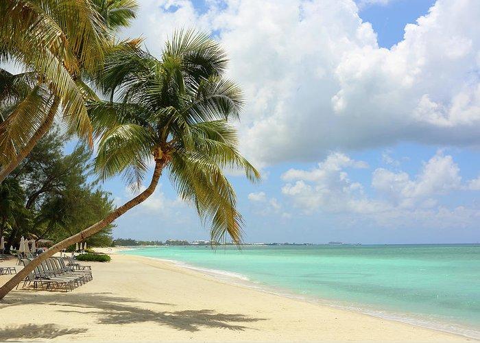 Scenics Greeting Card featuring the photograph Caribbean Dream Beach by Shunyufan