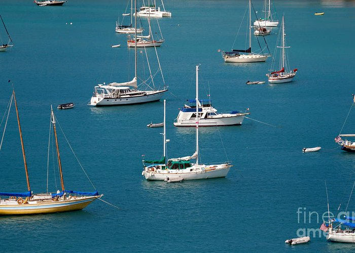 Azure Waters Greeting Card featuring the photograph Caribbean Sailboats by Amy Cicconi