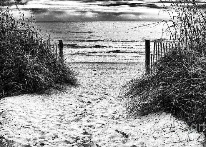 Carolina Beach Entry Greeting Card featuring the photograph Carolina Beach Entry by John Rizzuto