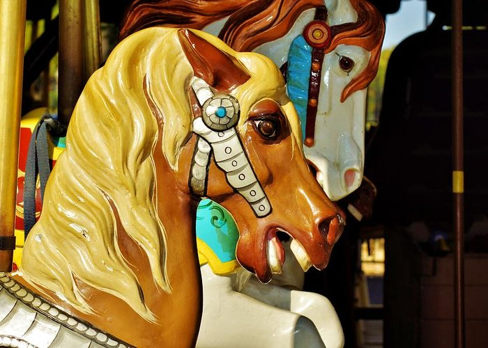 Carousel Horse Greeting Card featuring the photograph Carousel Horse 3 by Jean Goodwin Brooks
