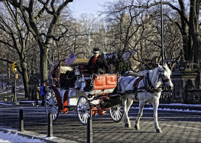 Carriage Greeting Card featuring the photograph Carriage Driver - Central Park - Nyc by Madeline Ellis