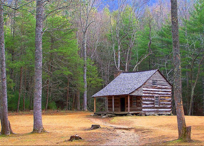 America Greeting Card featuring the photograph Carter Shield's Cabin II by Jim Finch