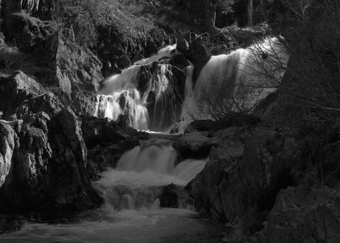 black And White Greeting Card featuring the photograph Cascade by Bernard Barcos