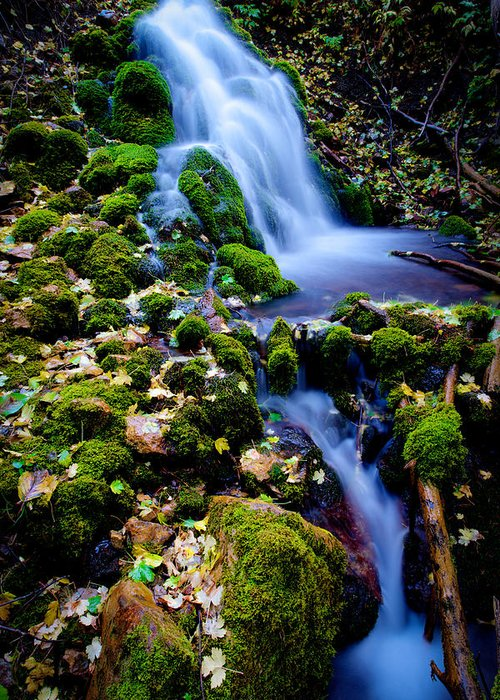 Landscape Greeting Card featuring the photograph Cascade Creek by Chad Dutson