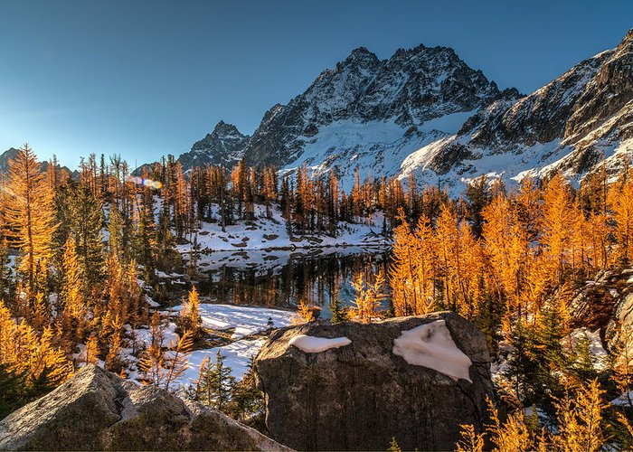 Fall Colors Greeting Card featuring the photograph Cascades Ring Of Larches by Mike Reid