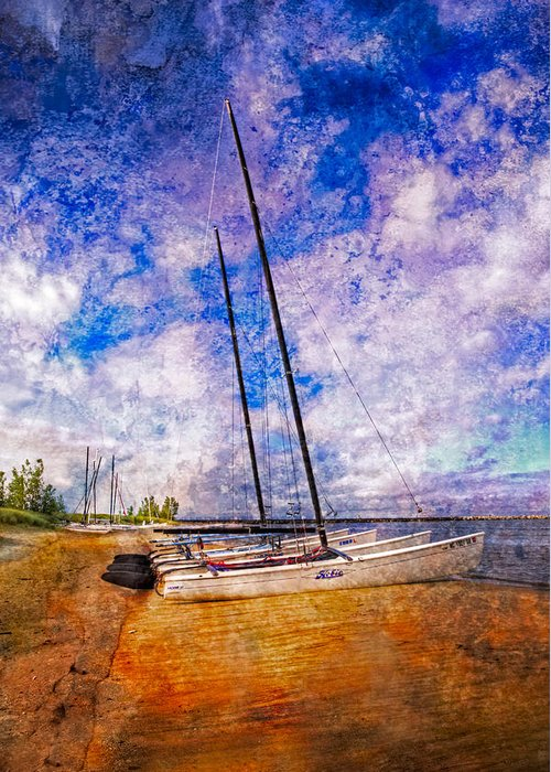 Boats Greeting Card featuring the photograph Catamarans At The Lake by Debra and Dave Vanderlaan