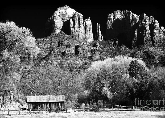 Cathedral Rock Greeting Card featuring the photograph Cathedral Rock by John Rizzuto